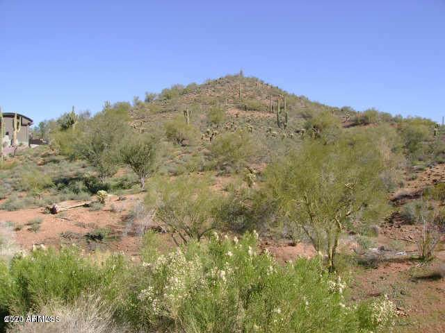 16152 E Saguaro Boulevard, Fountain Hills, AZ 85268 (MLS #6082065) :: Lifestyle Partners Team