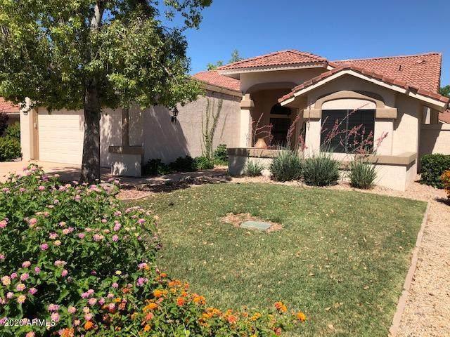 19810 N Zion Drive, Sun City West, AZ 85375 (MLS #6082328) :: My Home Group
