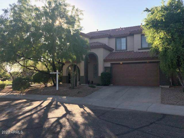 3386 W Hemingway Lane, Anthem, AZ 85086 (MLS #6082592) :: Maison DeBlanc Real Estate