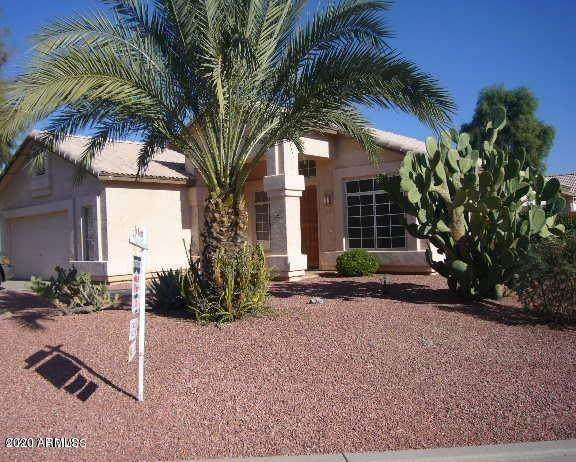2463 N 138TH Avenue, Goodyear, AZ 85338 (MLS #6082917) :: Klaus Team Real Estate Solutions