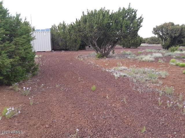 99 County Road 8058, Concho, AZ 85924 (MLS #6082924) :: Dave Fernandez Team | HomeSmart