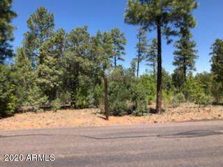 2880 W Falling Leaf Road, Show Low, AZ 85901 (MLS #6083211) :: The Laughton Team