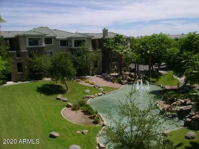 5345 E Van Buren Street #309, Phoenix, AZ 85008 (MLS #6083383) :: REMAX Professionals