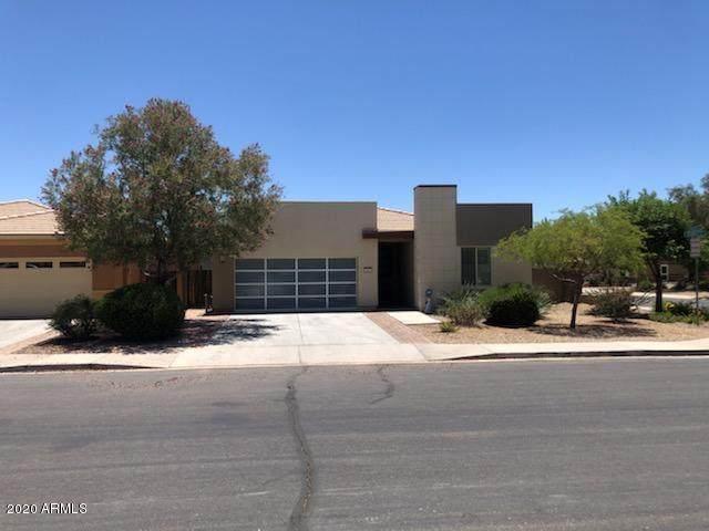 1647 E Dubois Avenue, Gilbert, AZ 85298 (MLS #6083701) :: Lucido Agency