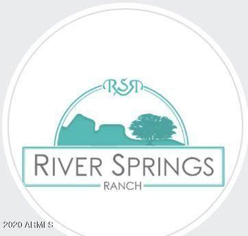 00xx E River Springs Ranch, St Johns, AZ 85936 (MLS #6087015) :: Conway Real Estate