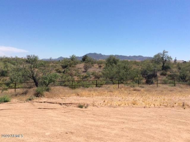 143xx E Skinner Drive, Scottsdale, AZ 85262 (MLS #6087257) :: Homehelper Consultants