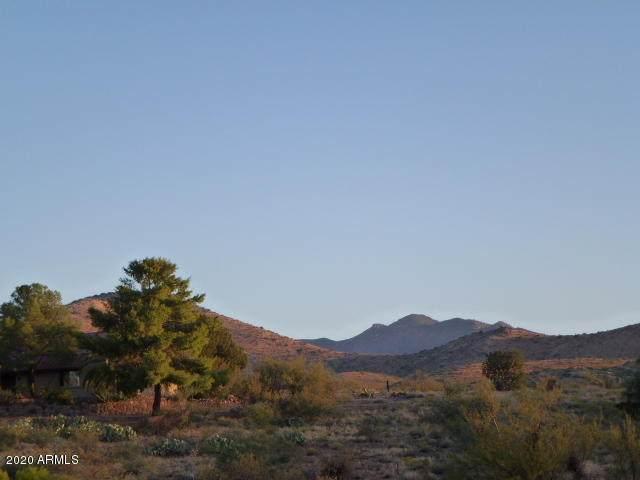 Lot 35 S San Carlos Drive, Globe, AZ 85501 (MLS #6088936) :: Klaus Team Real Estate Solutions