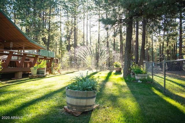 2172 Wildcat Road, Forest Lakes, AZ 85931 (MLS #6090865) :: neXGen Real Estate