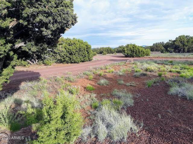98 County Road 8058, Concho, AZ 85924 (MLS #6091622) :: Dave Fernandez Team | HomeSmart