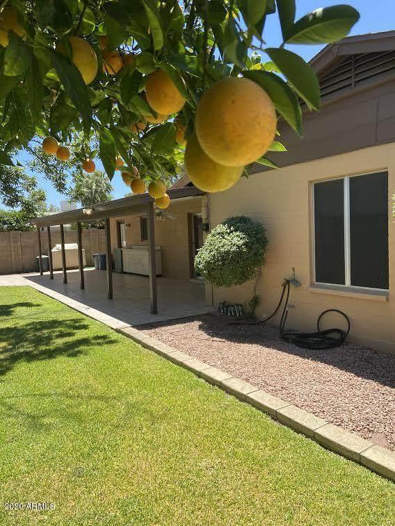 4220 W Eva Street, Phoenix, AZ 85051 (#6093790) :: Luxury Group - Realty Executives Arizona Properties