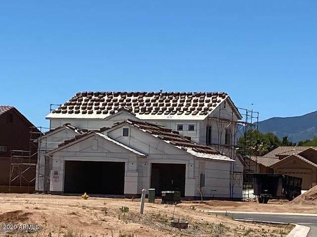 5443 Desert Willow Loop, Sierra Vista, AZ 85635 (MLS #6093954) :: The Bill and Cindy Flowers Team