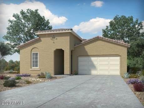 2595 E San Ricardo Trail, Casa Grande, AZ 85194 (MLS #6094629) :: Brett Tanner Home Selling Team