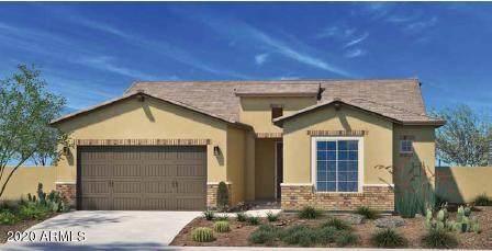 14606 W Georgia Drive, Surprise, AZ 85379 (MLS #6094962) :: Klaus Team Real Estate Solutions