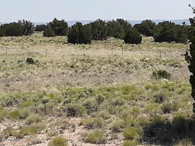 TBD 35.90 Acres Sanders, Sanders, AZ 86512 (MLS #6095485) :: The Property Partners at eXp Realty