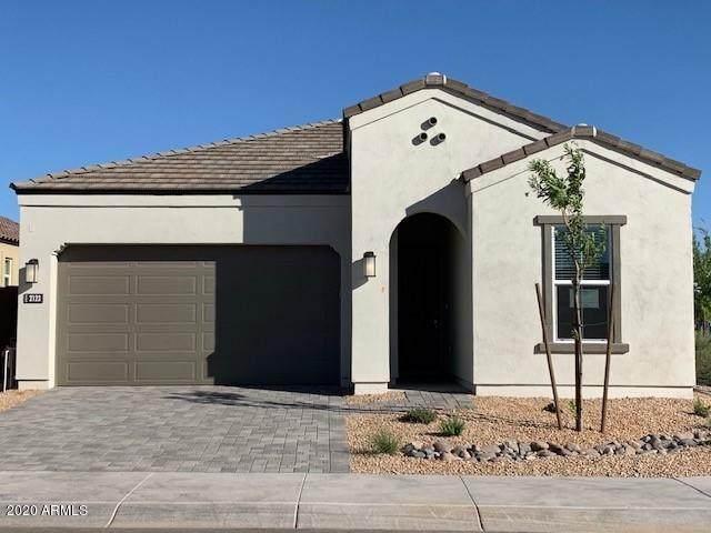 2239 E Saguaro Park Lane, Phoenix, AZ 85024 (MLS #6100079) :: The Garcia Group