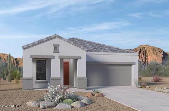 2235 E Saguaro Park Lane, Phoenix, AZ 85024 (MLS #6100097) :: My Home Group