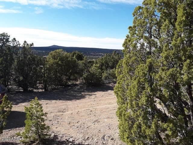 6 County Road 3041, Vernon, AZ 85940 (MLS #6100254) :: Klaus Team Real Estate Solutions