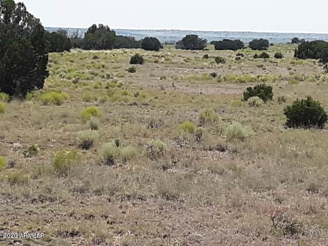 Big Six Ranches Lot 10 Unit 2, Concho, AZ 85924 (MLS #6100258) :: The Property Partners at eXp Realty