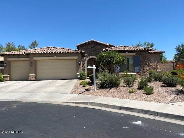 3334 E Beechnut Place, Chandler, AZ 85249 (MLS #6101246) :: Long Realty West Valley