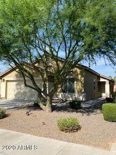 3646 S Garrison, Mesa, AZ 85212 (MLS #6101479) :: Kathem Martin