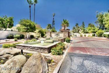 10080 E Mountainview Lake Drive #243, Scottsdale, AZ 85258 (MLS #6101901) :: CANAM Realty Group