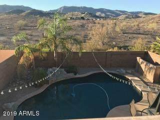 726 E Glenhaven Drive, Phoenix, AZ 85048 (MLS #6102427) :: Revelation Real Estate