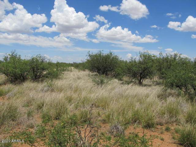 Lot 18 D Chual Vista Estates, Huachuca City, AZ 85616 (MLS #6105586) :: My Home Group