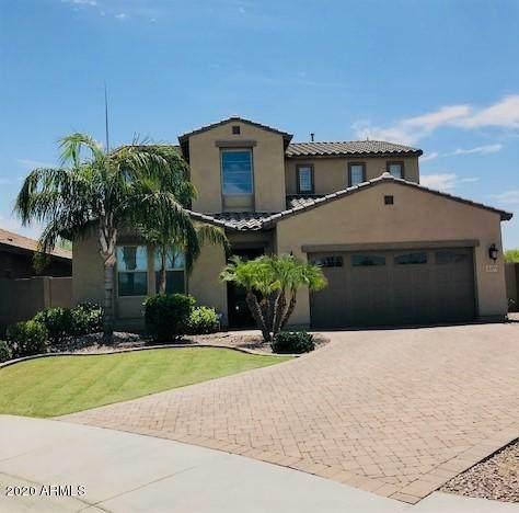 3371 E Plum Street, Gilbert, AZ 85298 (MLS #6107466) :: Keller Williams Realty Phoenix