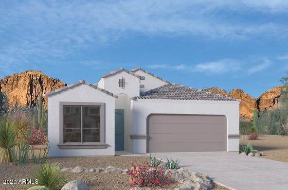 24536 N 20th Place, Phoenix, AZ 85024 (MLS #6108114) :: Klaus Team Real Estate Solutions