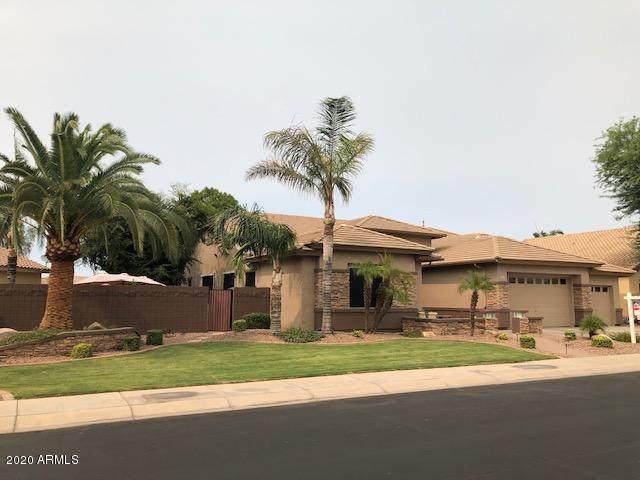 654 E Lowell Avenue, Gilbert, AZ 85295 (MLS #6112100) :: Klaus Team Real Estate Solutions