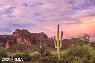 XX N Prospectors Road, Apache Junction, AZ 85119 (MLS #6112960) :: Long Realty West Valley