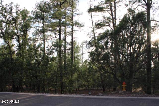 Lot 101 S Cedar Pine Lane, Pinetop, AZ 85935 (MLS #6113151) :: The Bill and Cindy Flowers Team