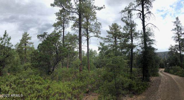 11 Donnas Way, Pine, AZ 85544 (MLS #6113712) :: Russ Lyon Sotheby's International Realty