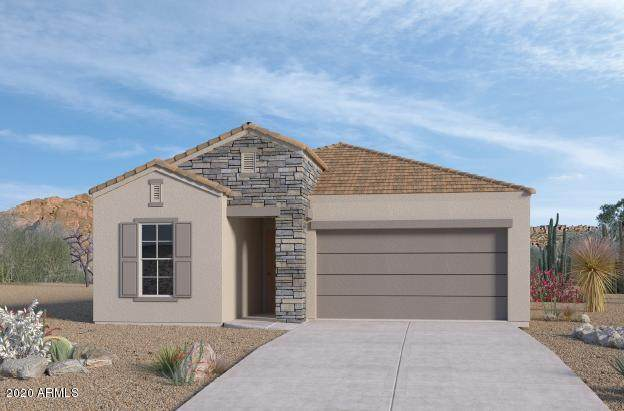 2133 E Northwood Drive, Phoenix, AZ 85024 (MLS #6115809) :: Midland Real Estate Alliance