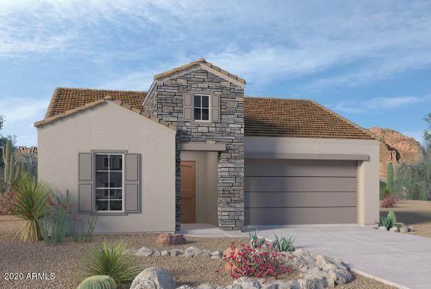 2049 E Questa Drive, Phoenix, AZ 85024 (MLS #6116306) :: Klaus Team Real Estate Solutions