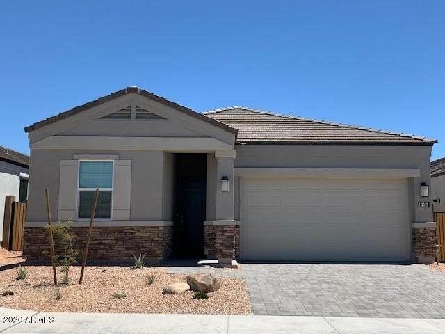 24540 N 20th Place, Phoenix, AZ 85024 (MLS #6116385) :: Nate Martinez Team
