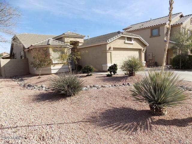 16672 W Rimrock Street, Surprise, AZ 85388 (MLS #6117698) :: Keller Williams Realty Phoenix