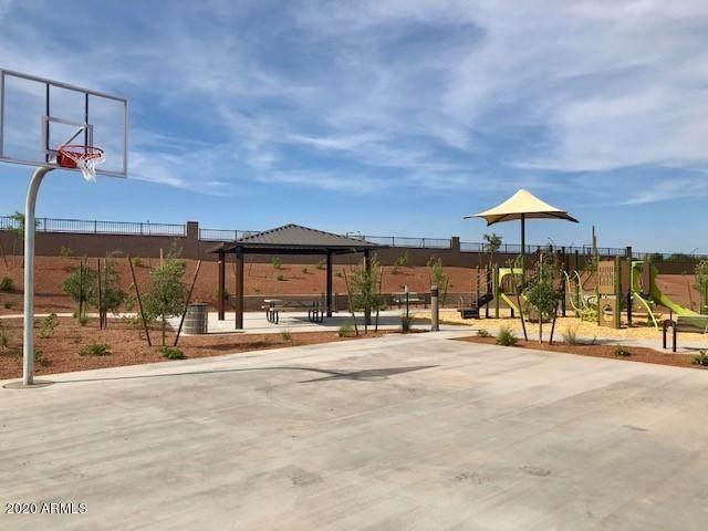 13171 W Redstone Drive, Peoria, AZ 85383 (MLS #6120050) :: Brett Tanner Home Selling Team