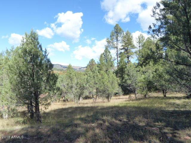 33 W Forest Svc Rd 200, Young, AZ 85554 (#6122578) :: Long Realty Company