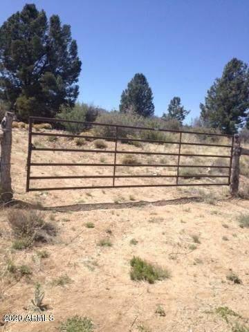 000 Sorrel Ranch Road - Photo 1
