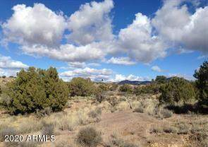 Lot 301B Silver Springs Road, Kingman, AZ 86401 (MLS #6128257) :: Long Realty West Valley