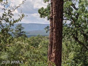 694 N Myrtle Point Trail, Christopher Creek, AZ 85541 (MLS #6129352) :: Kepple Real Estate Group