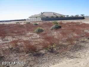 18217 W San Juan Court, Litchfield Park, AZ 85340 (MLS #6130275) :: Long Realty West Valley
