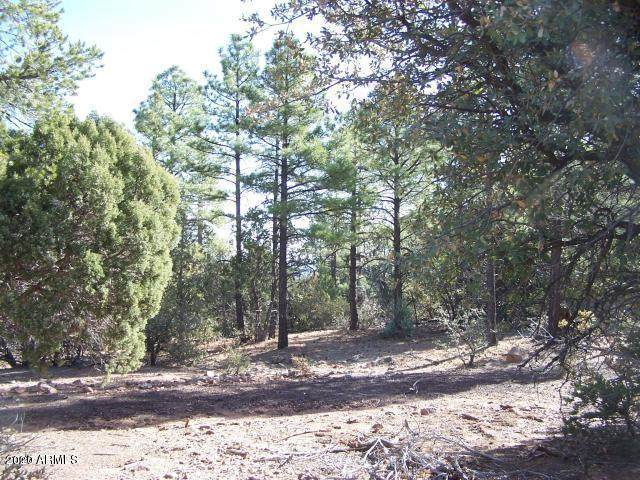 TBD Timber Ranch Road, Linden, AZ 85901 (MLS #6134794) :: Conway Real Estate