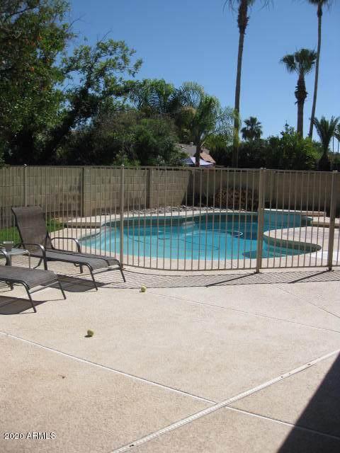 956 W Portobello Avenue, Mesa, AZ 85210 (MLS #6134845) :: The Daniel Montez Real Estate Group