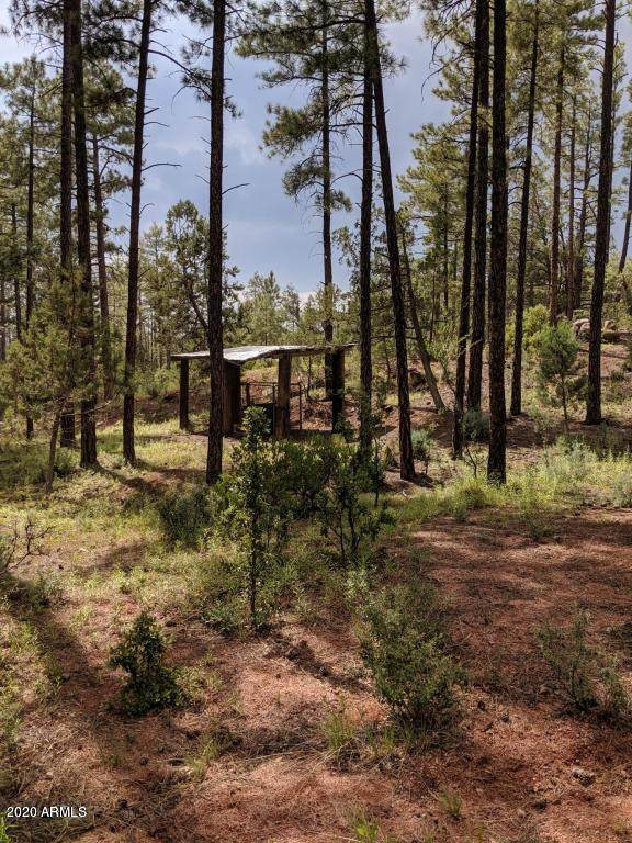 21B Wild Oak Drive, Christopher Creek, AZ 85541 (MLS #6134903) :: Nate Martinez Team