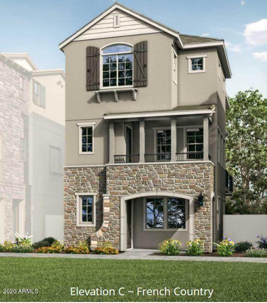 1763 E Hampton Lane, Gilbert, AZ 85295 (MLS #6137790) :: Homehelper Consultants