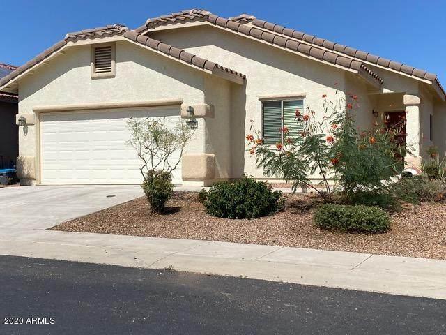 4263 Big Bend Street, Sierra Vista, AZ 85650 (#6138256) :: Long Realty Company