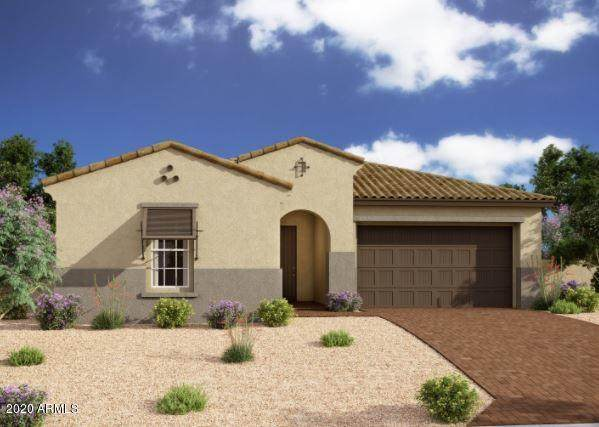 4804 S Pluto, Mesa, AZ 85212 (MLS #6147580) :: The Riddle Group