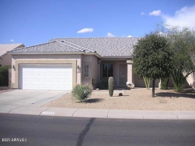 13686 W Tara Lane, Surprise, AZ 85374 (MLS #6148376) :: Conway Real Estate